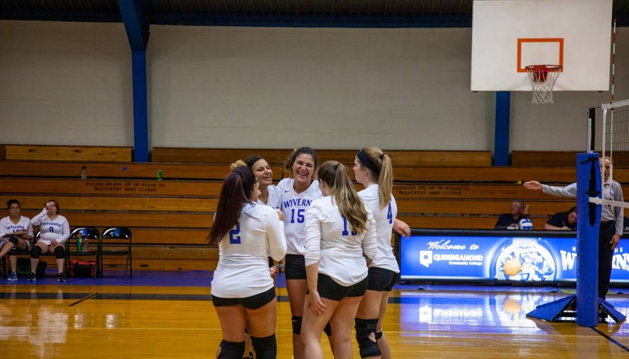The Wyvern's Volleyball team celebrates scoring a point against their opponent.