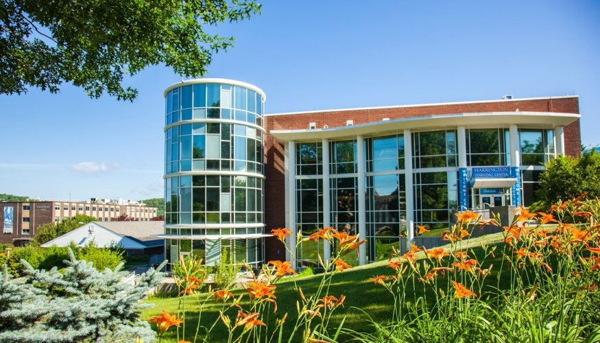 Summer is in full bloom at QCC.