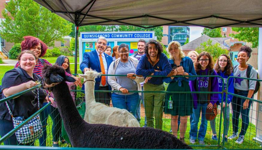 Bringing alpacas to campus has been one of the many annual events put on by the Student Accessibility Services department.