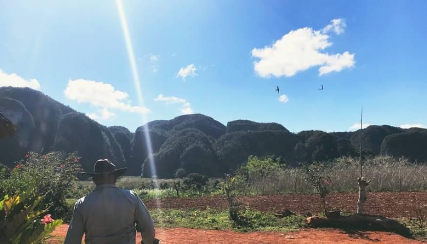 Pastoral setting in Cuba