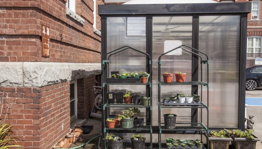 PTK Live & Learn Greenhouse