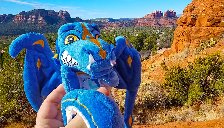 The Wyvern seemed very small at the Grand Canyon.