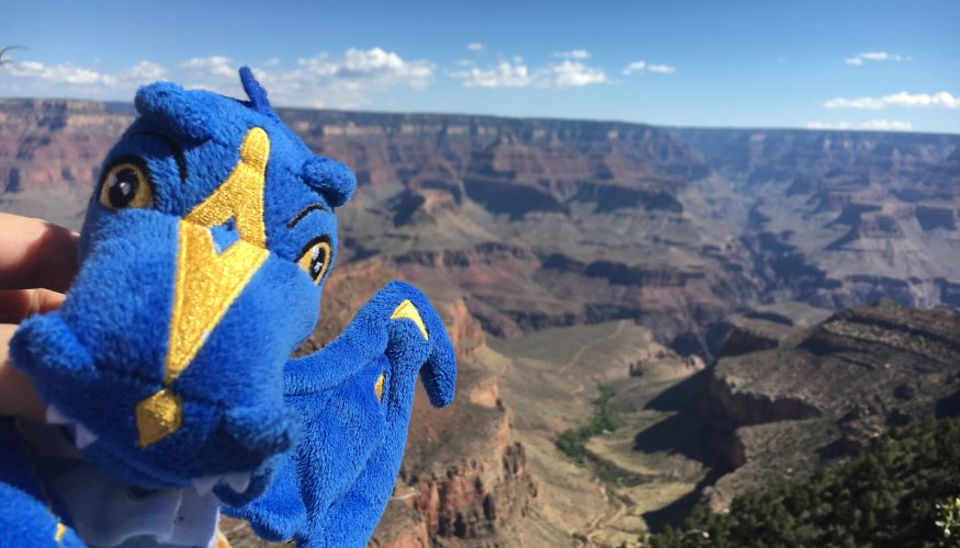 The Wyvern at the Grand Canyon.