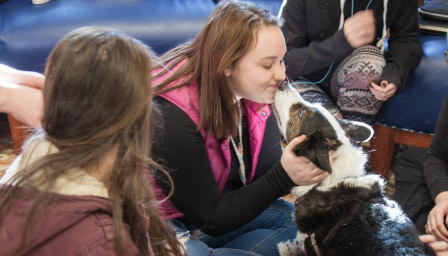 Paws for Pets service dogs gave a lot of love to students.
