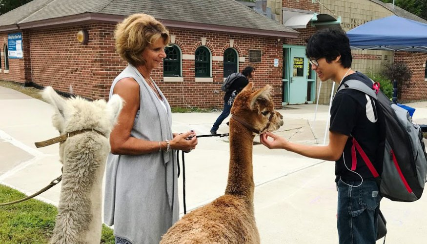 QCC student Andy Phan makes a new friend on his way to class.