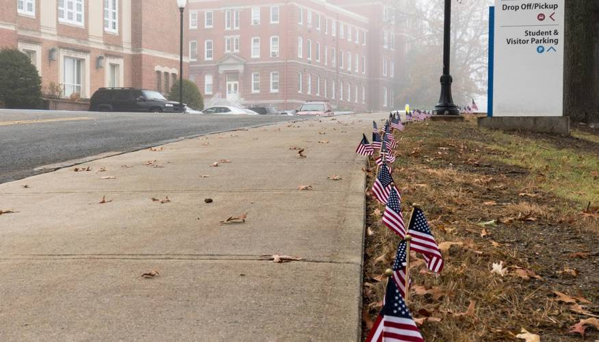 American flags line the roadway way leading up to the Administration Building on QCC's main campus.