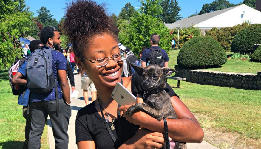 Everyone enjoyed QCC's Welcome Fair, including Lakyra Thompson's dog Curry.